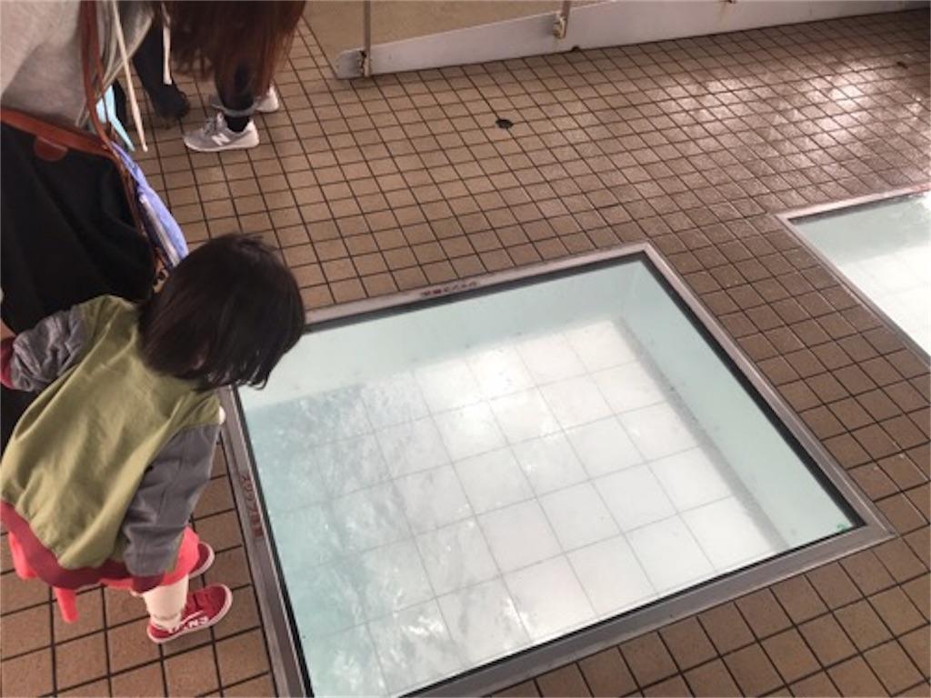 f:id:daisodaisuki:20190501213607j:image