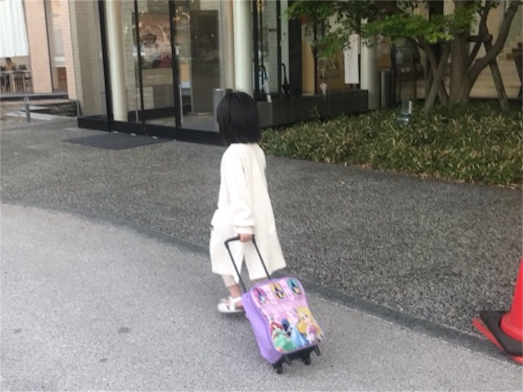 f:id:daisodaisuki:20190502221223j:image