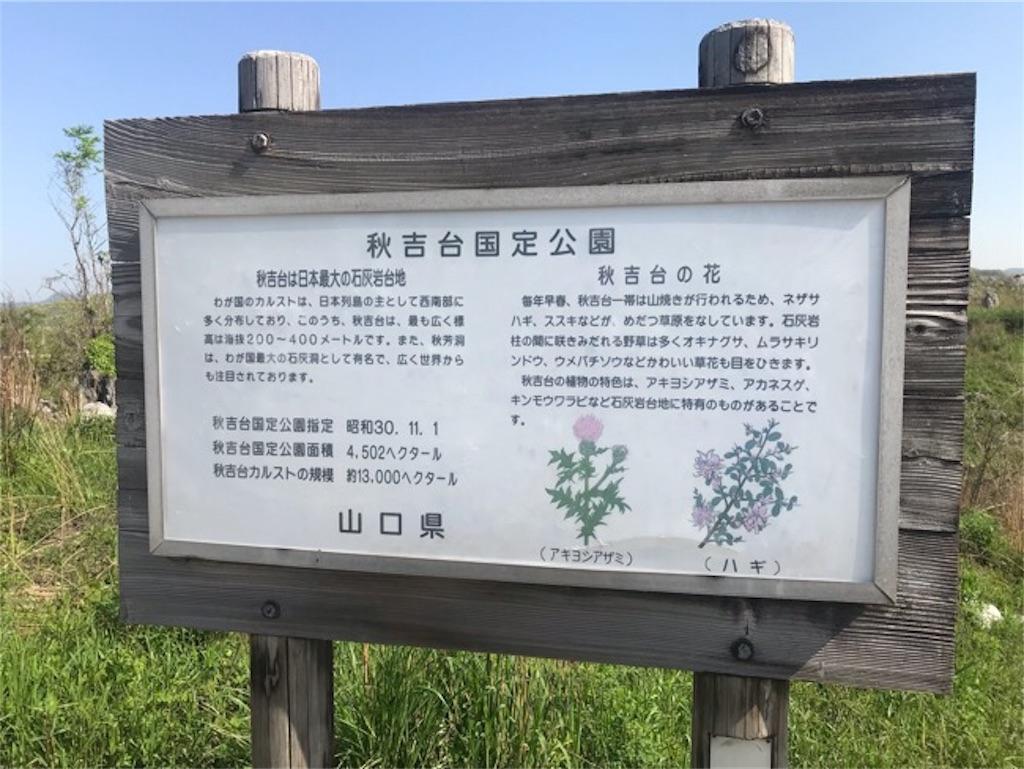 f:id:daisodaisuki:20190504123913j:image