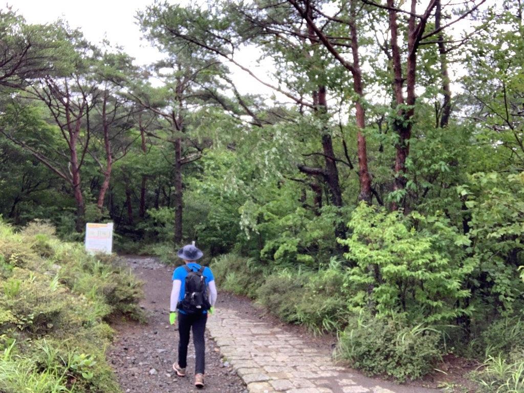 f:id:daisodaisuki:20190811163325j:image