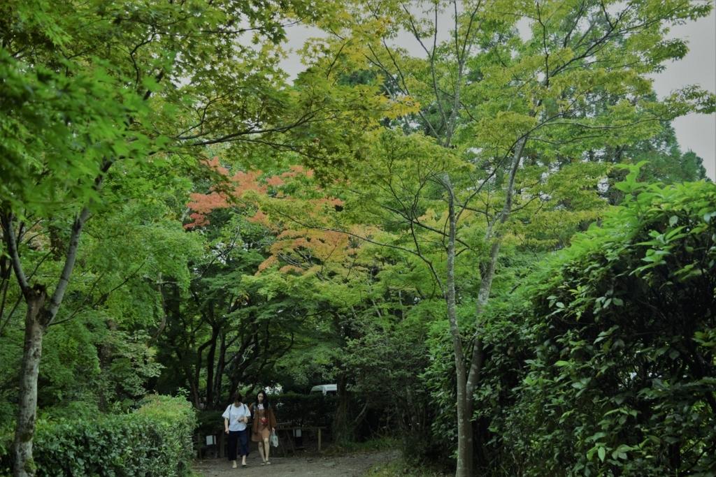 f:id:daisuke108:20170921203029j:plain