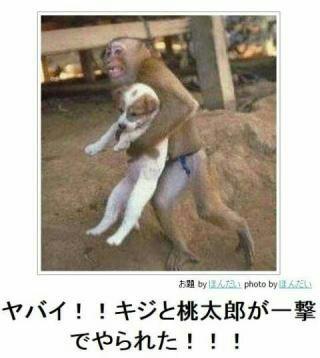 f:id:daisuke190:20160903223621j:image