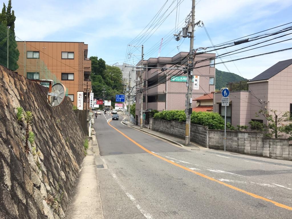 桜の杜道中細い道