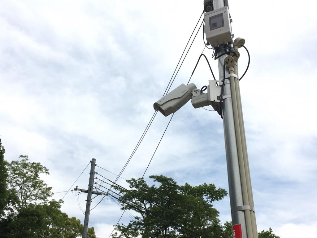 桜の杜の監視カメラ