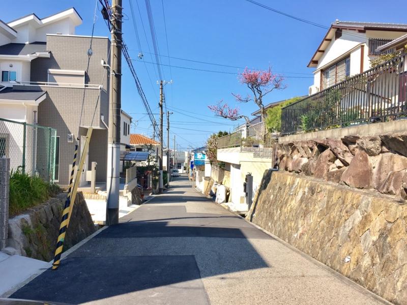 f:id:daisukeshima:20170402103824j:plain