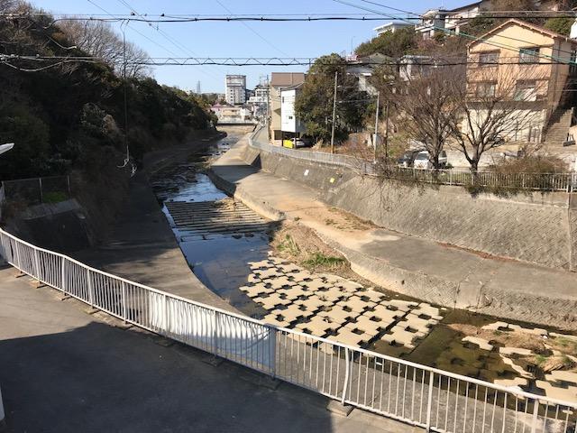 f:id:daisukeshima:20180218171816j:plain