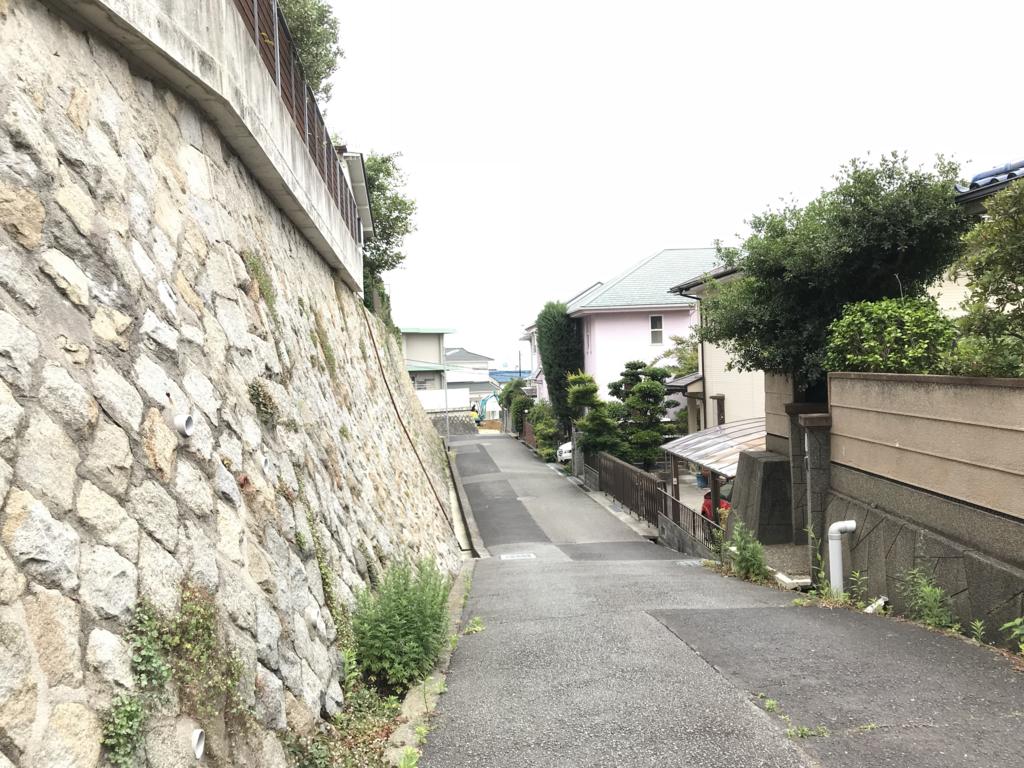 f:id:daisukeshima:20180611170140j:plain
