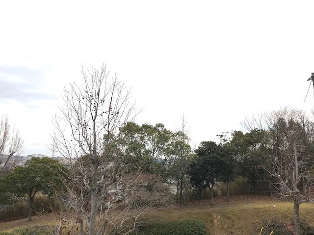 f:id:daisukeshima:20190128145234j:plain