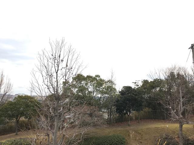 f:id:daisukeshima:20190128145248j:plain