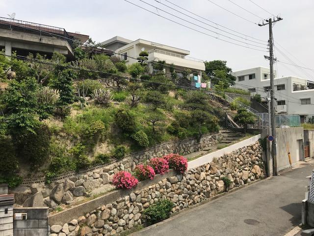 f:id:daisukeshima:20190602173255j:plain