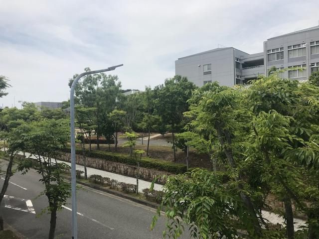 f:id:daisukeshima:20190608183341j:plain