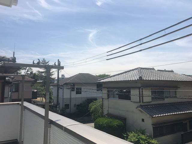 f:id:daisukeshima:20190616162717j:plain