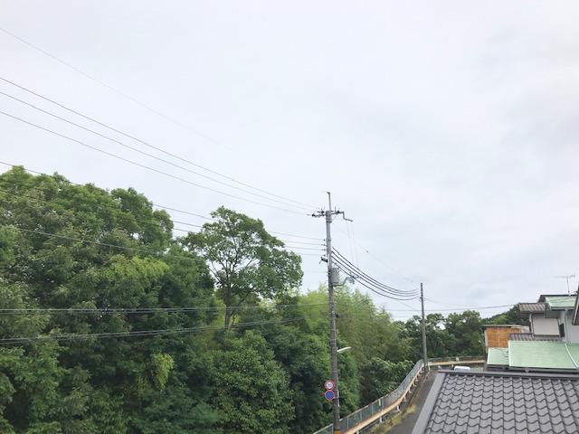 f:id:daisukeshima:20190617163752j:plain