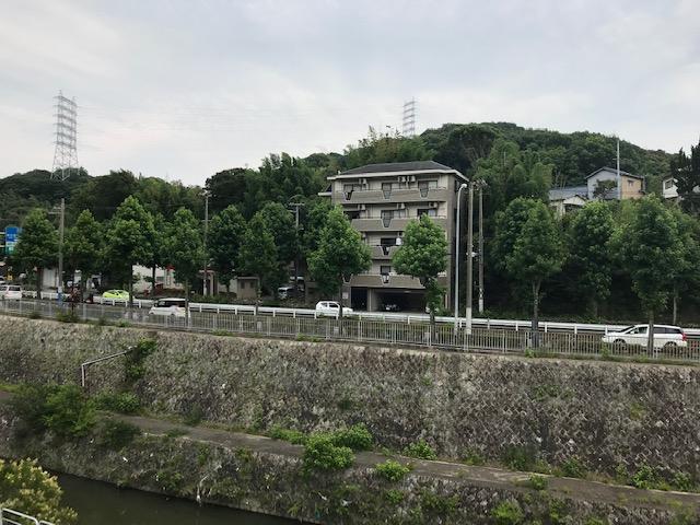 f:id:daisukeshima:20190711145605j:plain