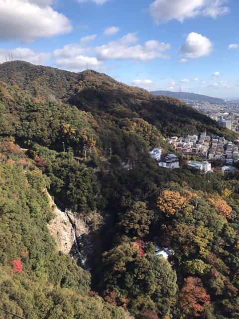 f:id:daisukeshima:20191126153517j:plain