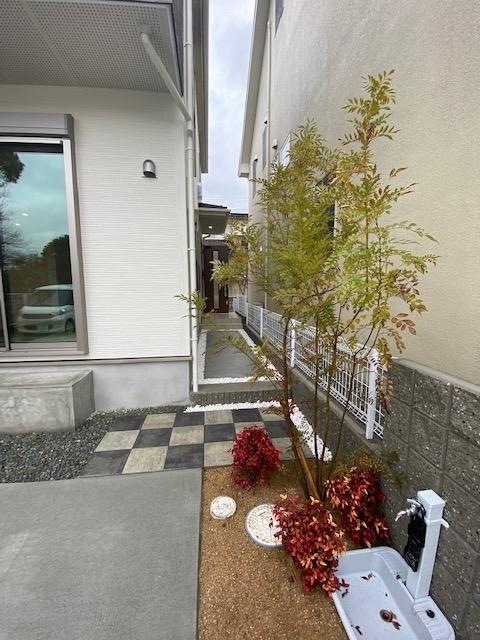 f:id:daisukeshima:20200224101733j:plain