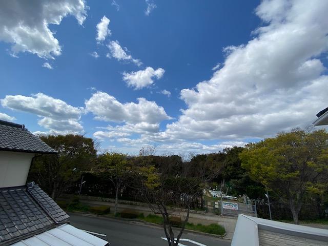 f:id:daisukeshima:20200412142531j:plain