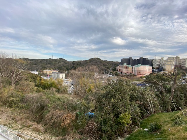 f:id:daisukeshima:20210227092113j:plain