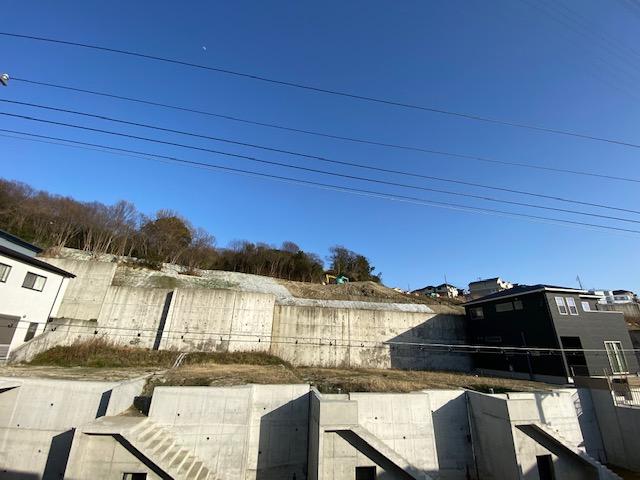 f:id:daisukeshima:20210326175108j:plain