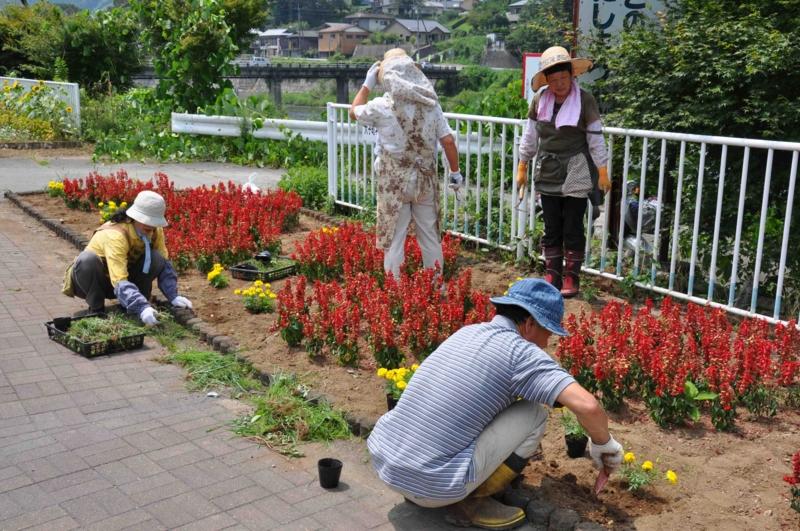 f:id:daisukiibaraki:20120727112137j:image:w640
