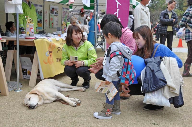 f:id:daisukiibaraki:20130406114443j:image:w360