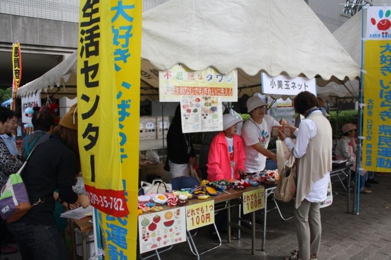 f:id:daisukiibaraki:20131002133002j:image:w640