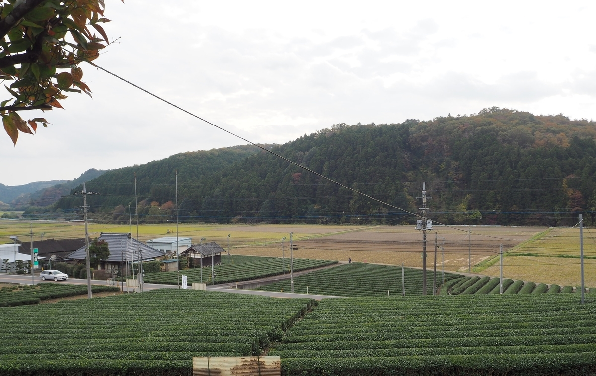 f:id:daisukiibaraki:20140101000001j:plain
