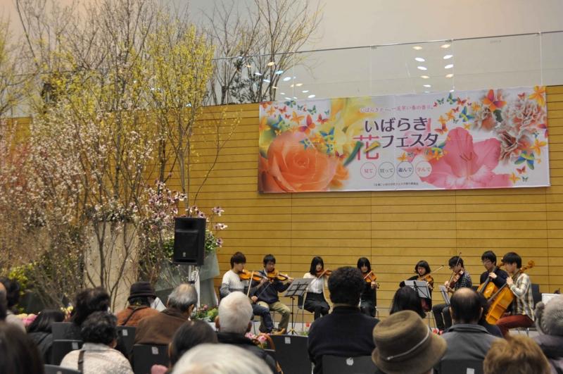 f:id:daisukiibaraki:20140216122328j:image:w640