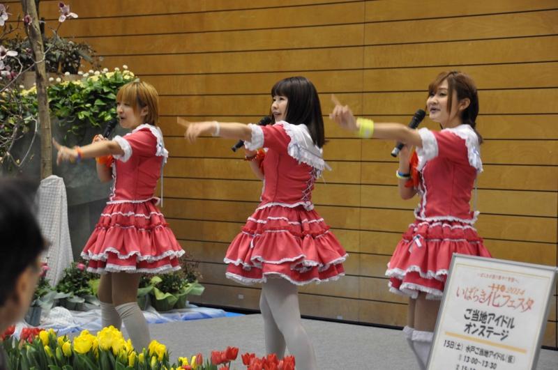 f:id:daisukiibaraki:20140216133725j:image:w360