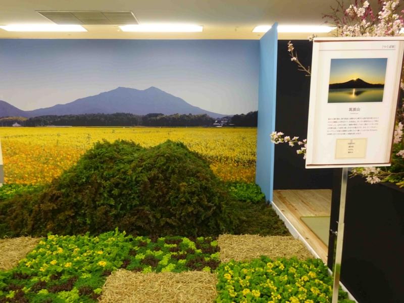 f:id:daisukiibaraki:20150130121930j:image:w640