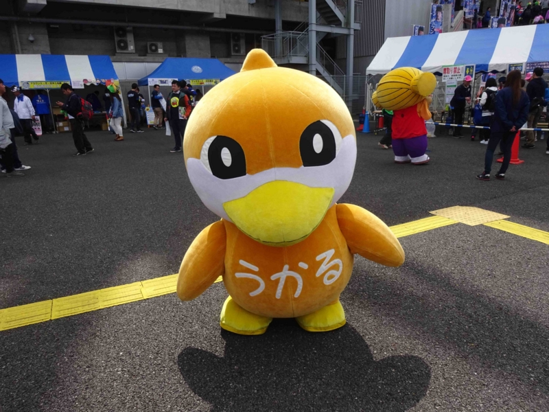 f:id:daisukiibaraki:20160320110158j:image:w640