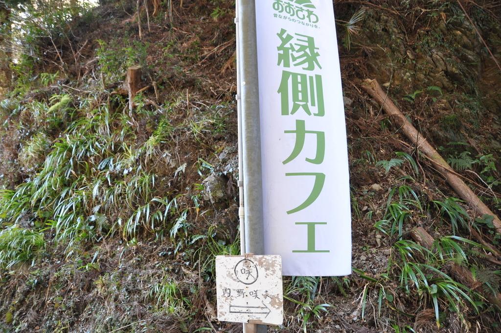 f:id:daisukiibaraki:20190127142236j:plain