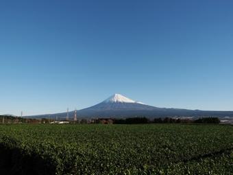 f:id:daisukiibaraki:20190218085018p:plain
