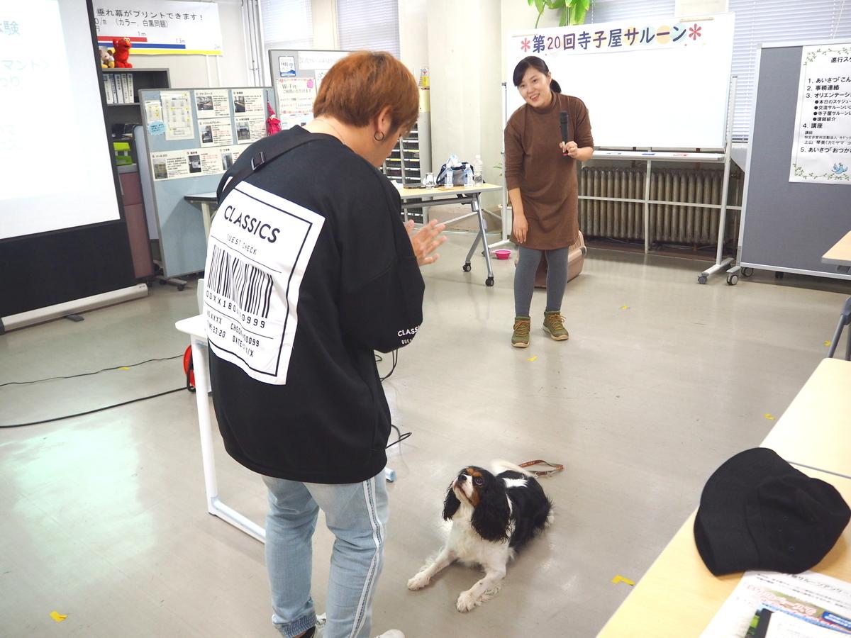 f:id:daisukiibaraki:20191024151142j:plain