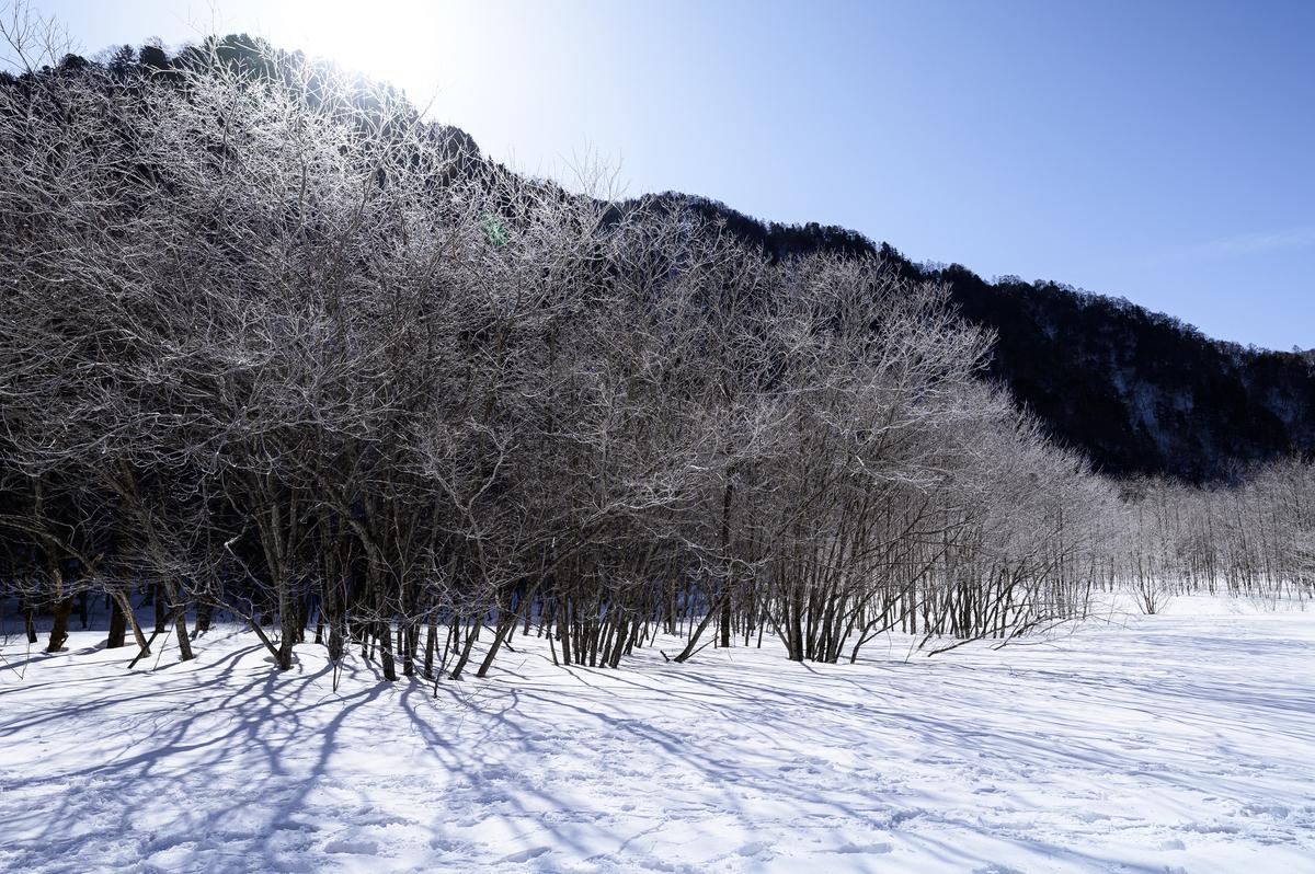 f:id:daitai_Iro:20210310222834j:plain