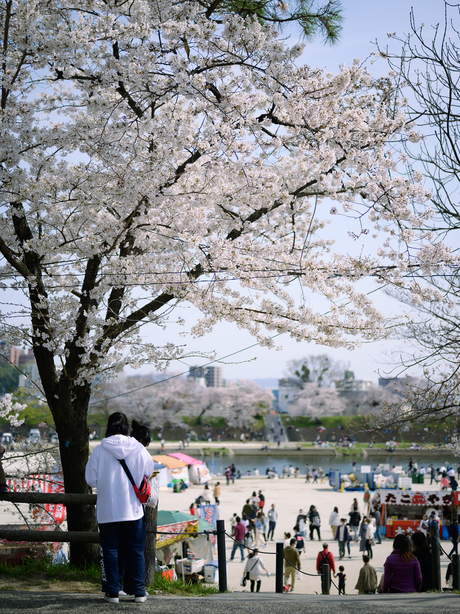 f:id:daitai_Iro:20210402192700j:plain