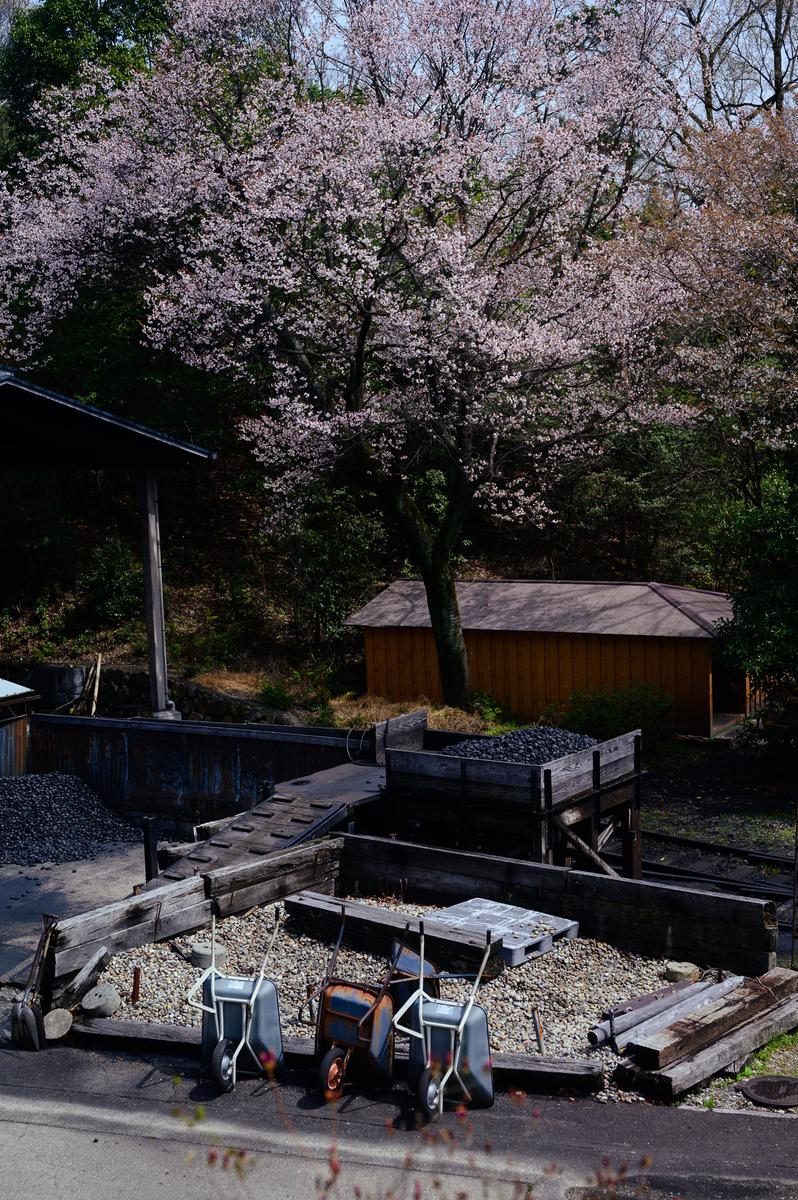 f:id:daitai_Iro:20210402211039j:plain