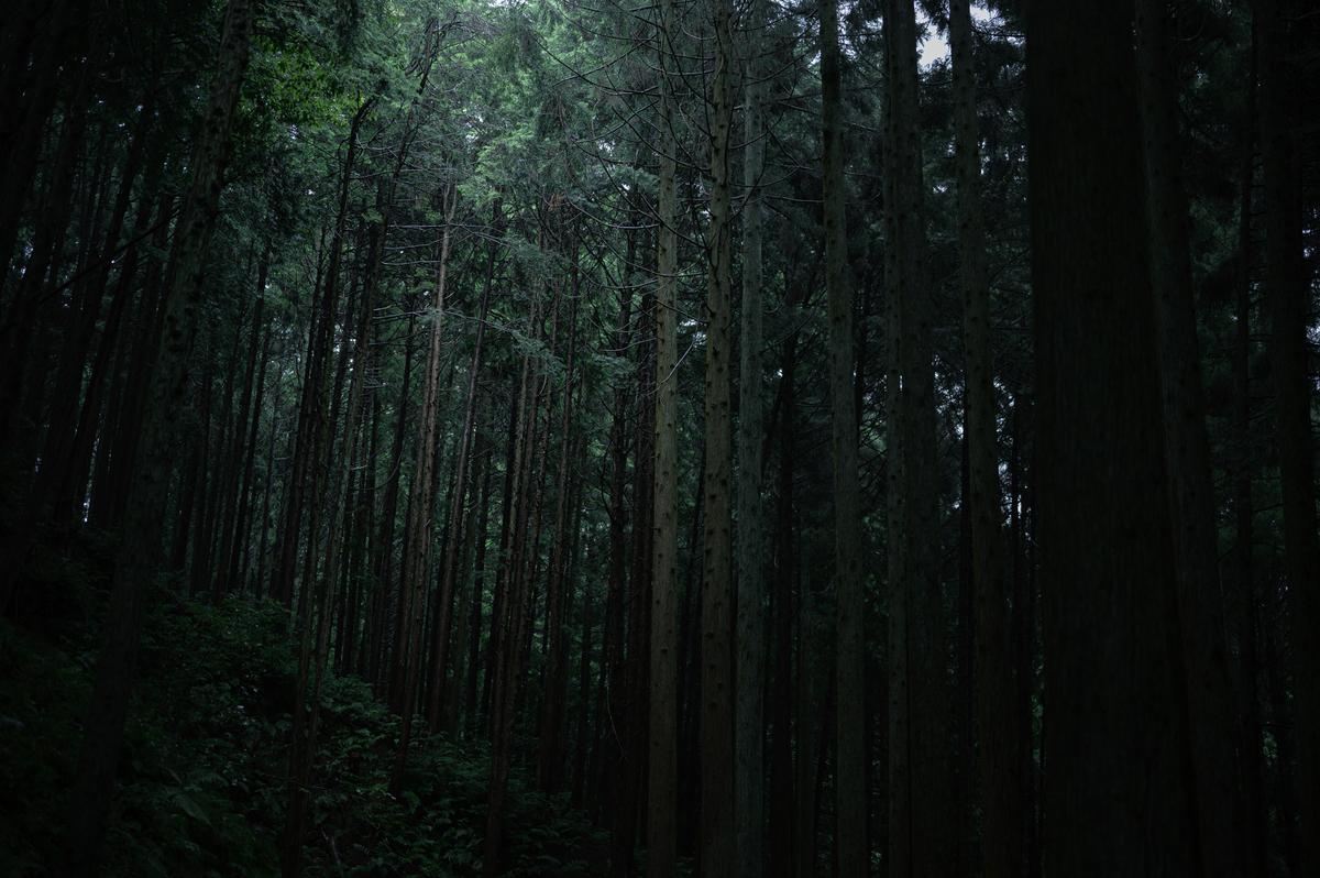 f:id:daitai_Iro:20210530183120j:plain