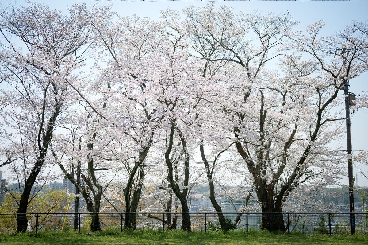 f:id:daitai_Iro:20210601220010j:plain