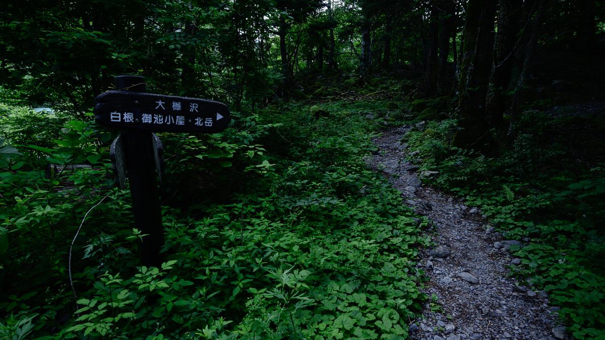 f:id:daitai_Iro:20210801195354j:plain