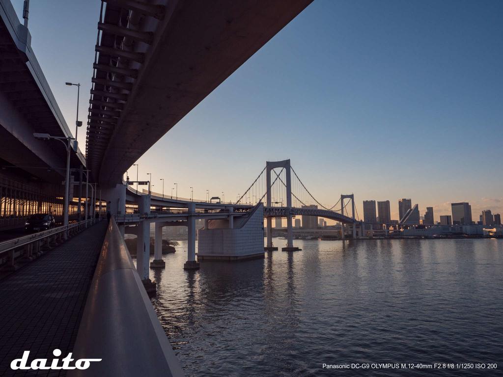 f:id:daito-a110:20190122221855j:plain