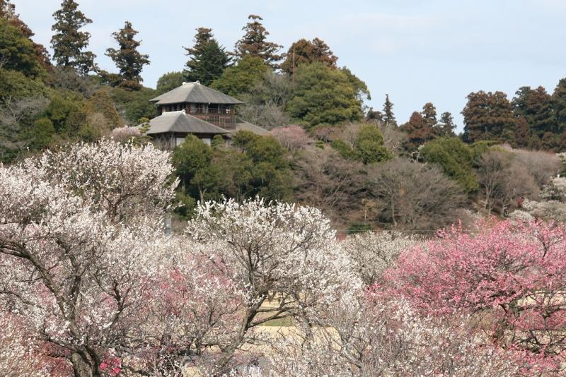 f:id:daiyoshi:20161211153412j:plain