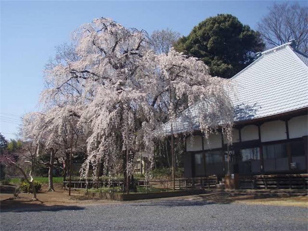 f:id:daizumonogatari:20190627052835j:image