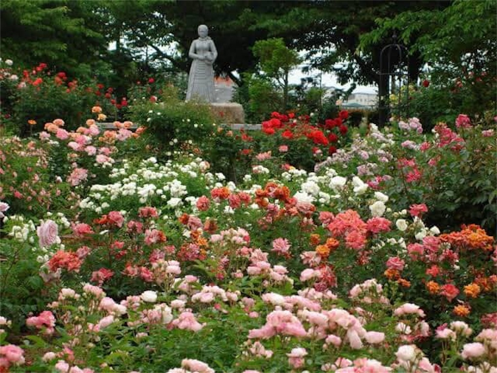 f:id:daizumonogatari:20190628055829j:image