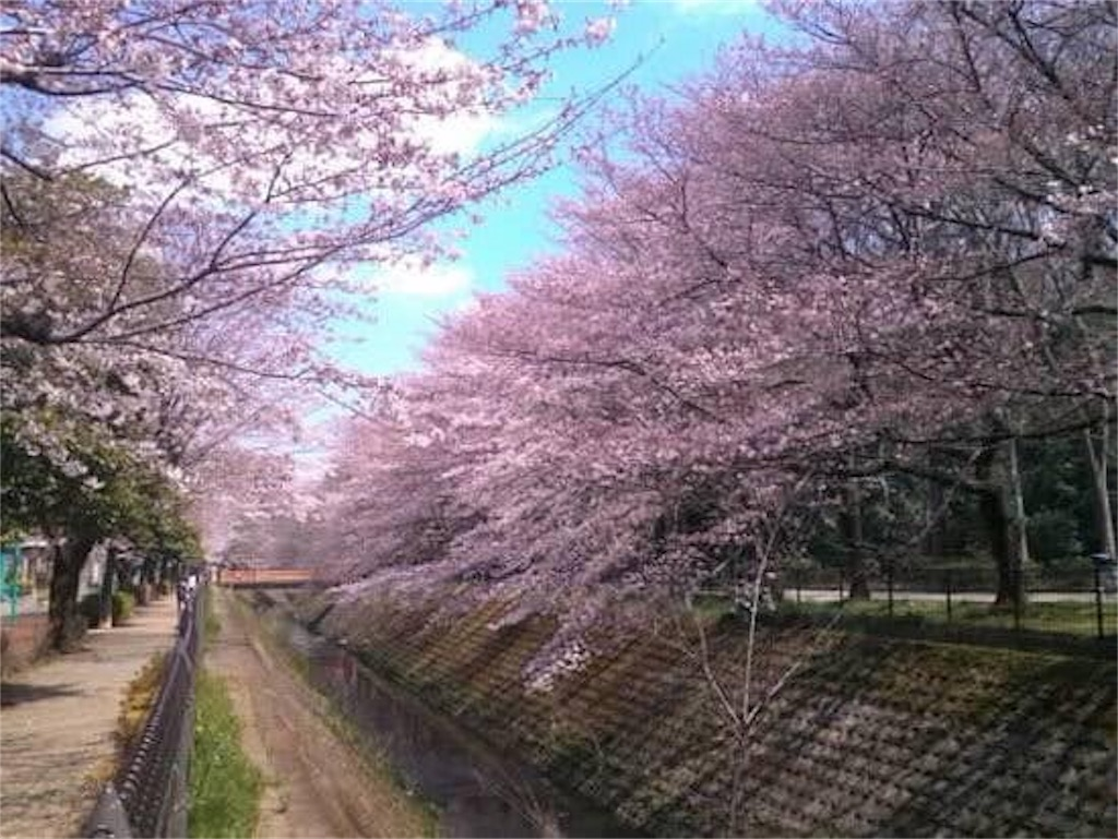 f:id:daizumonogatari:20190701061420j:image