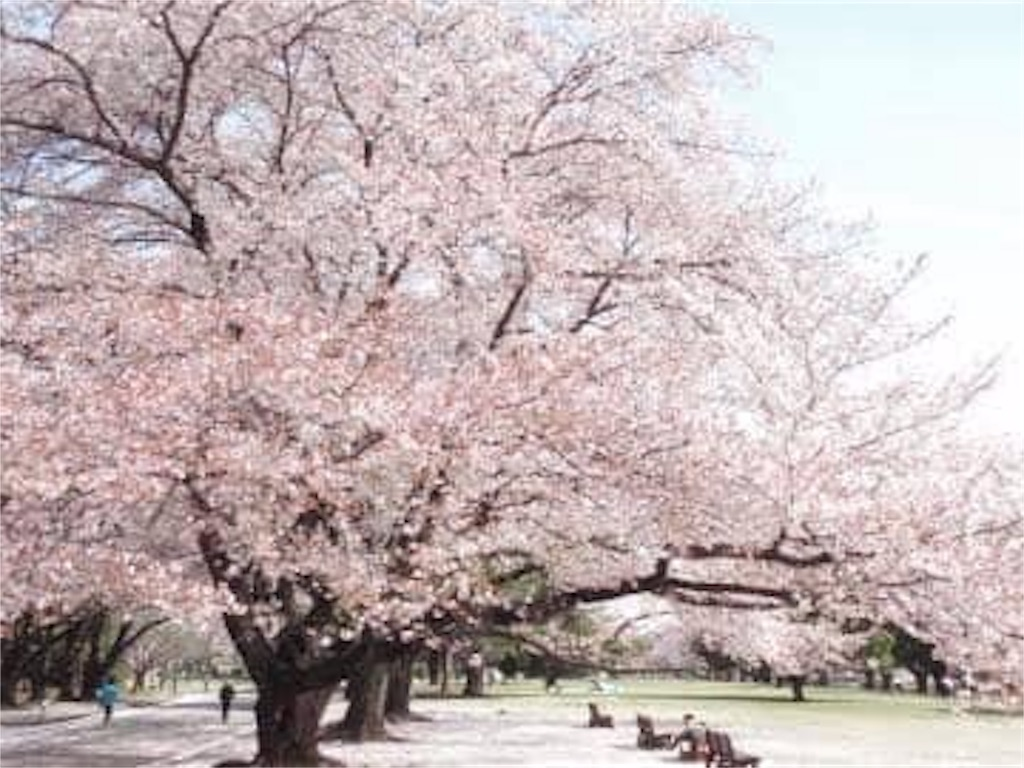 f:id:daizumonogatari:20190706195829j:image