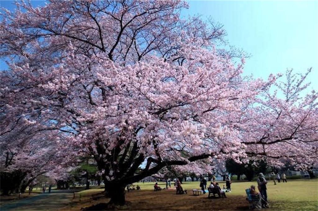 f:id:daizumonogatari:20190706195832j:image