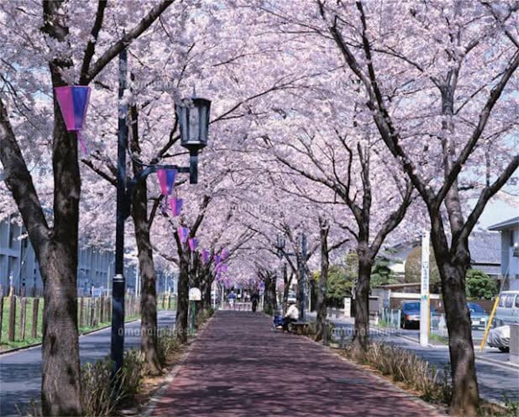f:id:daizumonogatari:20190708052601j:image