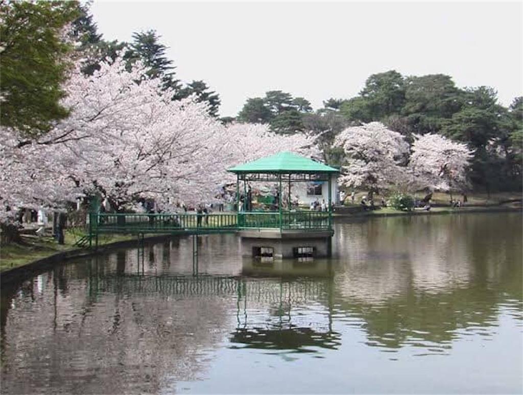 f:id:daizumonogatari:20190717211940j:image