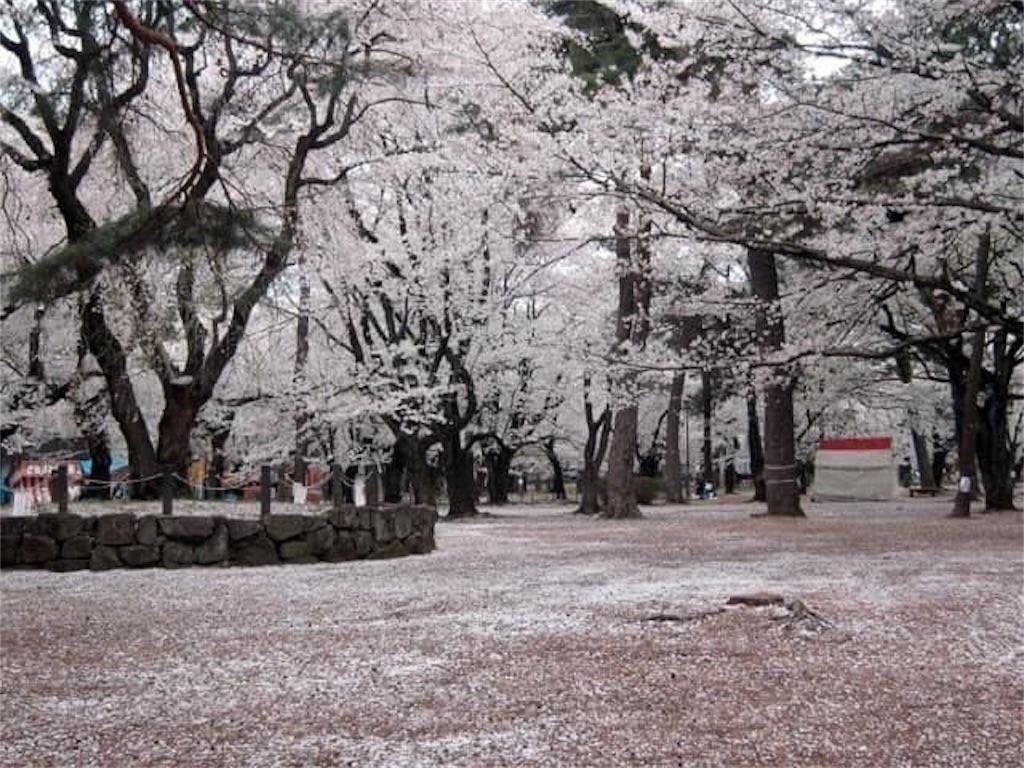 f:id:daizumonogatari:20190717211946j:image